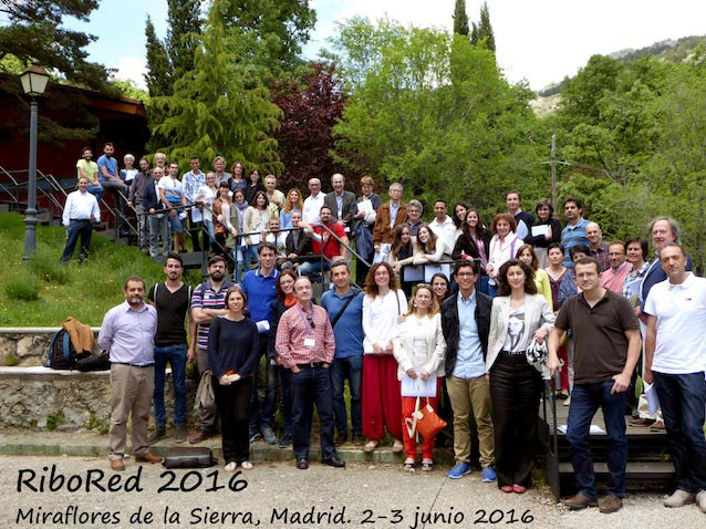 RiboRed 2016, VII Reunión de la Red Temática Española de RNA