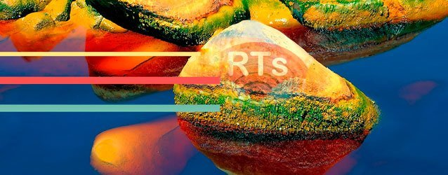 International RTs Symposium 2017