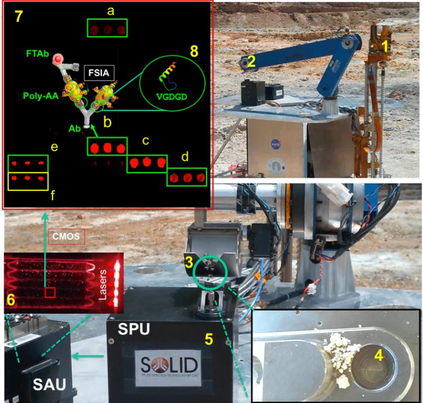 """Así funciona SOLID: (1, 2) SOLID en la plataforma simulada de IceBreaker durante la campaña de colaboración con NASA-Ames a Río Tinto en 2017. La perforadora IceBreaker(1) extrae la muestra del subsuelo (hasta 1 m de profundidad) y el brazo robótico (2) alimenta a SOLID (3) en la celda de extracción de la SPU. En ese momento se acciona el funcionamiento remoto y automatizado: se añade la solución de extracción (4), se cierra y se procede a la homogenización/extracción mediante ultrasonicación (5), después de un filtrado por 10 micras se incuba con LDChip en la SAU (6). Tras el revelado con anticuerpos fluorescentes se obtiene una imagen con una cámara CCD (6) que es descargada y analizada en """"Tierra"""" (7). Las réplicas de tres puntos fluorescentes (a-e) revelan la presencia de biomarcadores microbianos, muchos de ellos fragmentos de proteínas (péptidos) como muestra el esquema (8). Ab, anticuerpo capturador inmovilizado en LDChip; FTAb, anticuerpo fluorescente trazador; FSIA, Fluorescent Sandwich ImmunoAssay o Inmunoensayo fluorescnete en sándwich. Cada punto de LDChip tiene 120-150 micras de diámetro y contiene aproximadamente 10 millones de moléculas de anticuerpo esperando capturar estructuras moleculares para las que fueron """"entrenados"""". Se trata de anticuerpos policlonales, para aumentar la probabilidad de capturar los biomarcadores."""
